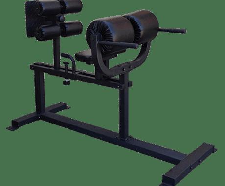 FringeSport OneFitWonder Commercial Glute Ham Developer (GHD) bench