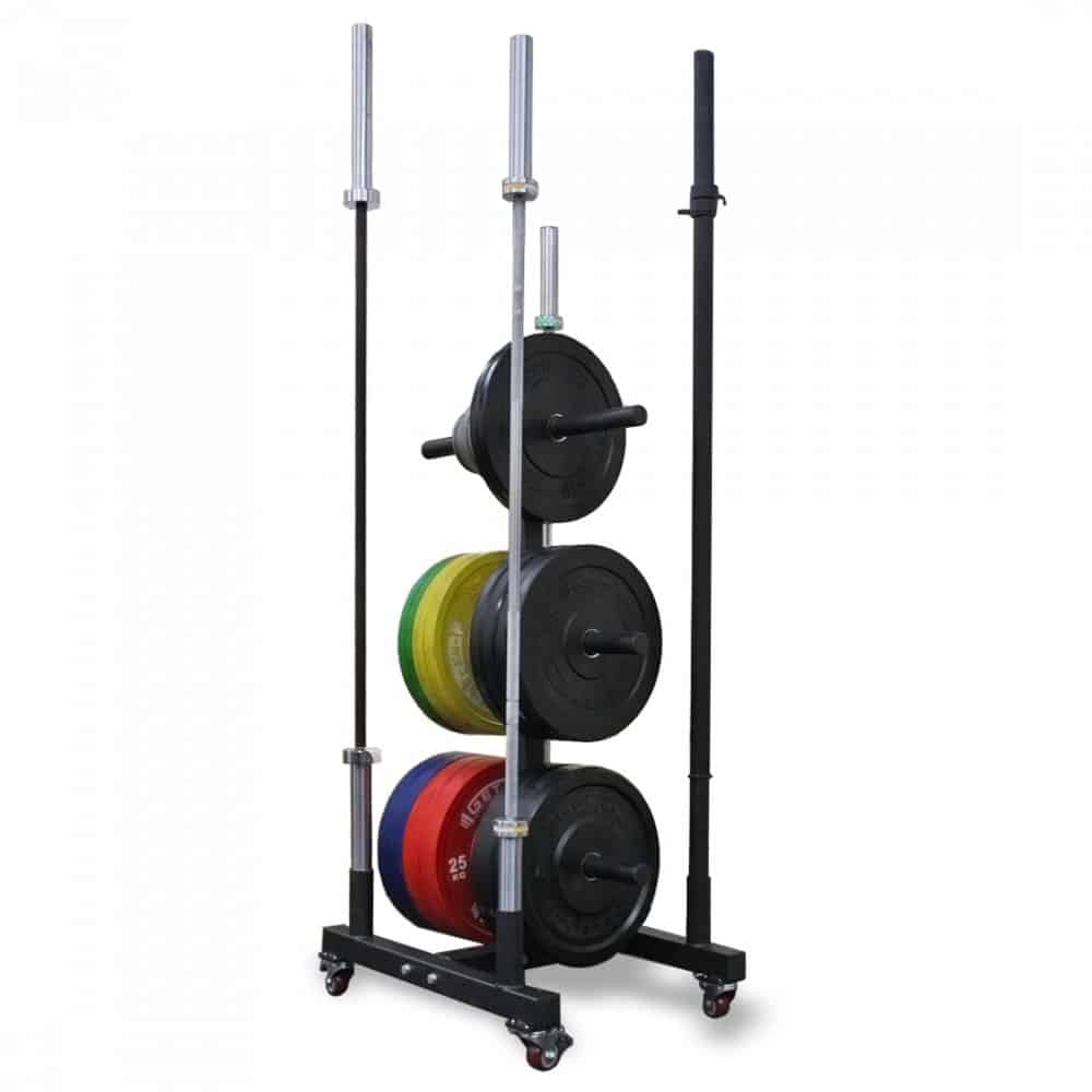 Get RX'd Vertical Plate Tree with plates