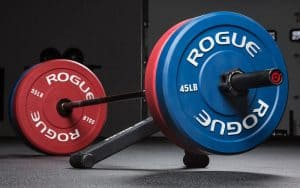 Rogue Color Echo Bumper Plate - Excellent, economical choice for training in your garage gym or home gym.