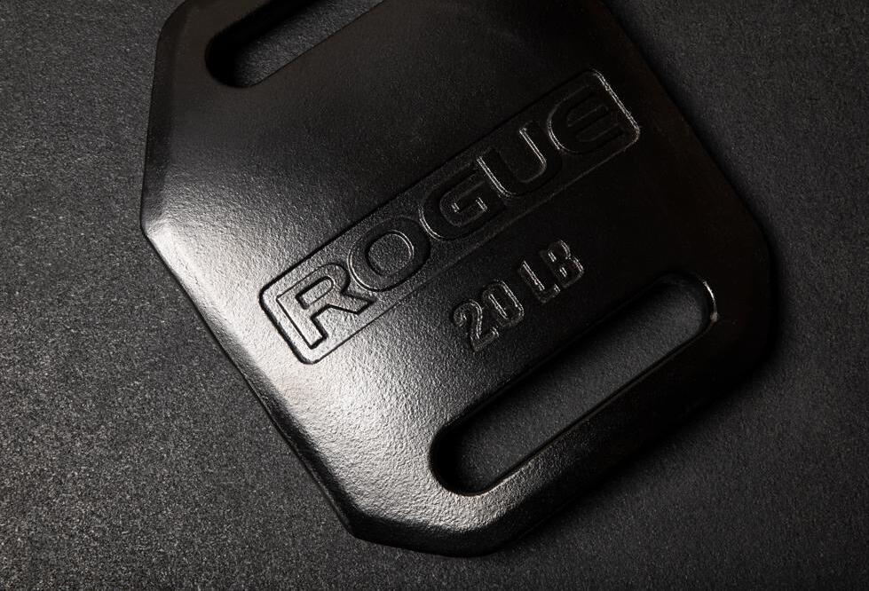 Rogue Echo Weight Vest Plate 20lb