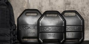 Rogue Echo Weight Vest Plate different weights