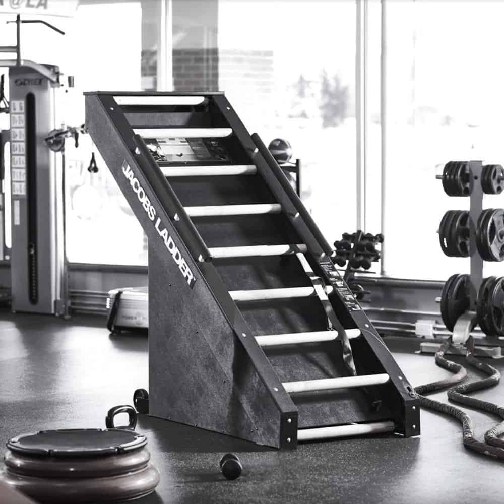Rogue Fitness Jacobs Ladder in the gym