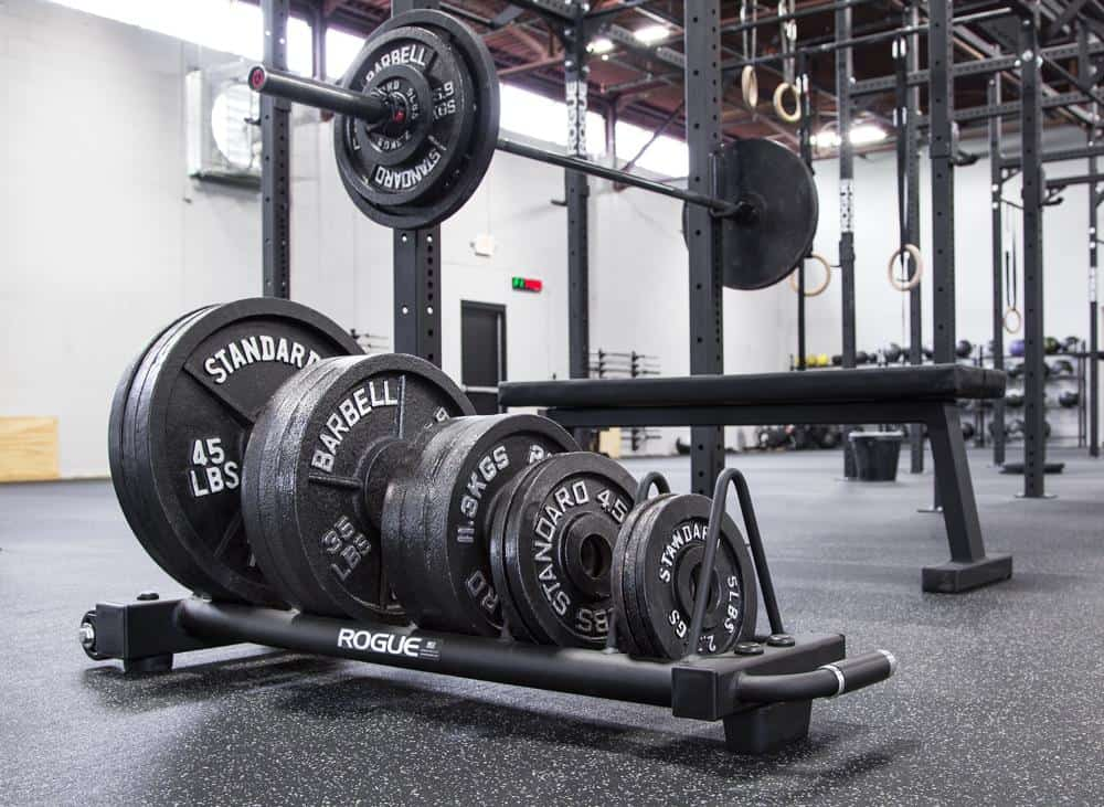 Rogue Horizontal Plate Rack 2.0 different sizes of plates