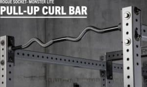 Rogue Monster Lite Socket Pull-up Curl Bar main