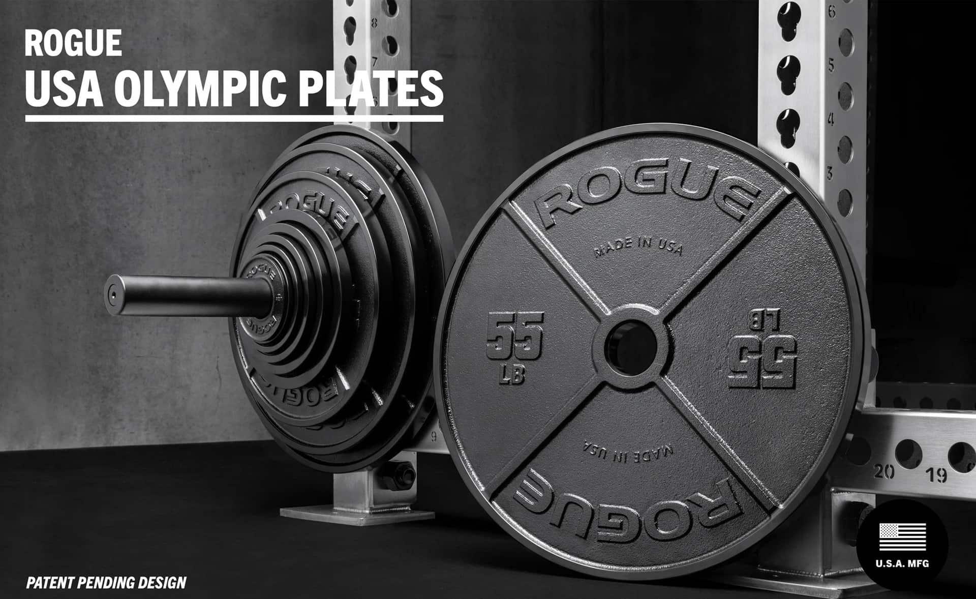 Rogue USA Olympic Plates main
