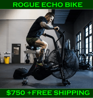 Rogue Echo Bike - Best Assault Bike for CrossFit?