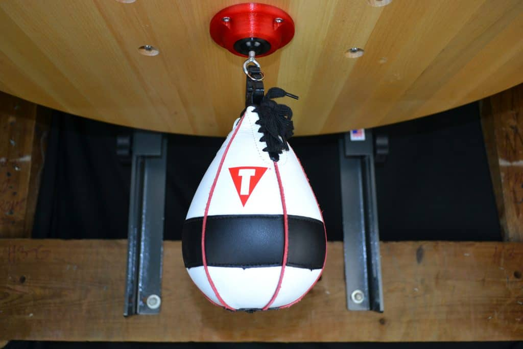 Title lightning fast speed bag review (3)