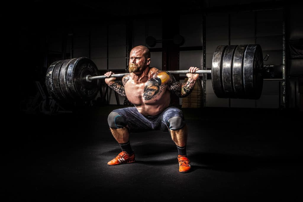 Barbell Back Squat - used extensively in Starting Strength