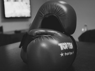 Boxing Gloves - Used for Boxing Training