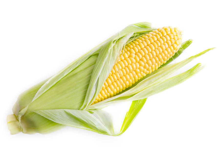 Corn - source of corn oil - which is very high in omega-6 fatty acids and prevalent in the modern Western diet