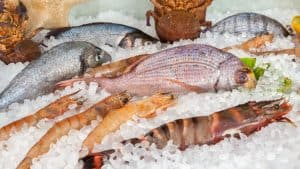 All fish and seafood is considered paleo