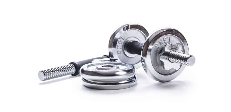 Plate loading dumbbell handles with spin locks, and shown with small standard weight plates - this is your cheapest home gym dumbbell option