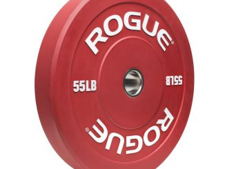 Rogue Echo Colored Bumper Plate for an Olympic Weightlifting Barbell