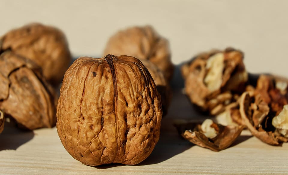 Walnuts - a good source of the essential fatty acid ALA